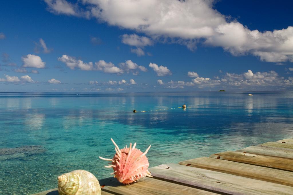 immersioni in Polinesia