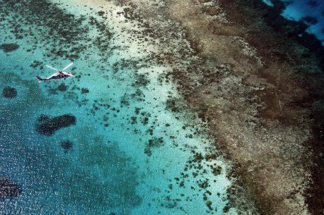 Soggiorno diving in Micronesia