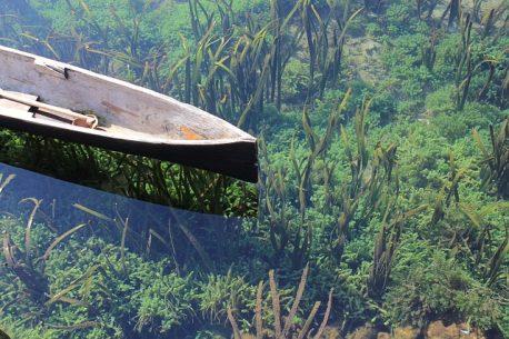 viaggio sub Manado
