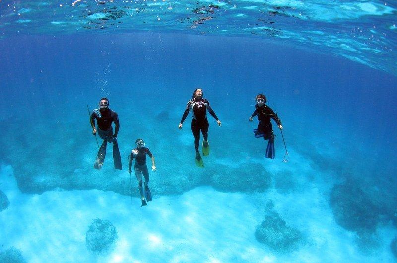 Viaggio diving Bahamas